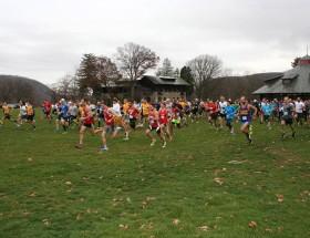 Start of the 2015 Alumni Run